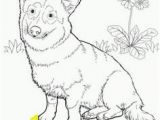 Coloring Pages Of Corgis 452 Best Woodburning Ideas Corgi Images On Pinterest
