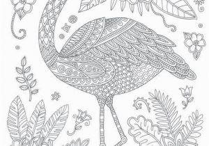 Coloring Pages Of Flamingos Swan Coloring Pages 237 Best Coloring Swan Flamingo