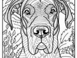 Coloring Pages Of Great Danes 1460 Best Coloring Pages and Such Images