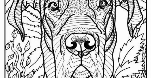 Coloring Pages Of Great Danes Free Printable Great Dane Coloring Page Available for