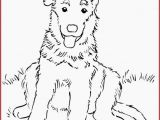 Coloring Pages Of Huskies Husky Coloring Pages Inspirational Husky Coloring Pages New Husky