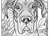 "Coloring Pages Of Jaguars Printable Great Dane Coloring Page ""moose"""