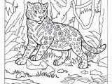 Coloring Pages Of Jaguars Printable Jaguar Coloring Jungle Animals African Animals Africa