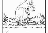 Coloring Pages Of Kangaroos Kangaroo Coloring Page Beautiful Kangaroo Coloring Sheet 13