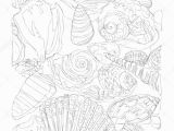 Coloring Pages Of Marines Marine Life Line Art Continuous Line Drawing Coloring Page