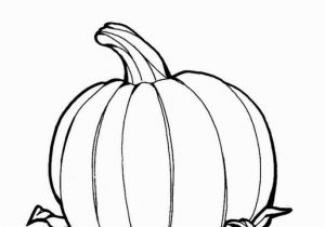 Coloring Pages Of Pumpkins 195 Pumpkin Coloring Pages for Kids
