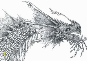 Coloring Pages Of Real Dragons Realistic Dragon Coloring Pages Dragon Coloring Sheets Realistic