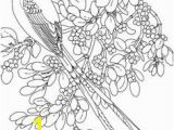 Coloring Pages Of Scissors 125 Best Birds Insects Etc Coloring Pages 2 Images On Pinterest In