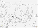 Coloring Pages Of Stuffed Animals 20 Nice Ty Stuffed Animals Coloring Pages