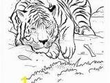 Coloring Pages Of Tiger Cubs Mama and Baby Tiger Coloring Page Printables Pinterest