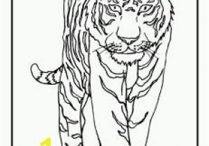 Coloring Pages Of Tiger Cubs Zoo Coloring Pages for Preschoolers