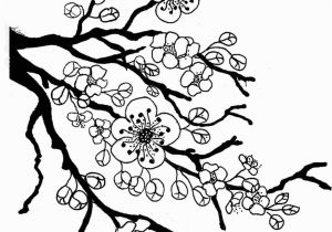 Coloring Pages Of Trees and Flowers Sakura Bloom Drawing