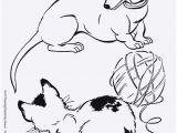 Coloring Pages Of White Tigers Ausmalbilder Zum Drucken Frisch Malvorlage A Book Coloring