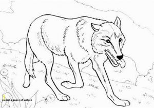 Coloring Pages Of Wolfs Artstudio301