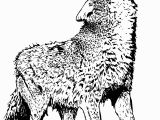 Coloring Pages Of Wolves Wolf Coloring Pages Free Wolf Coloring Pages