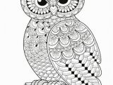 Coloring Pages Owls Owls to Print Coloring Page An Owl Printable Coloring