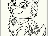 Coloring Pages Paw Patrol Printable Paw Patrol Everest Coloring Pages with Images