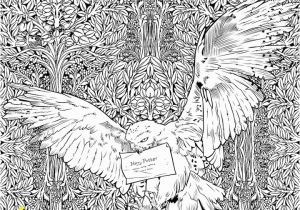 Coloring Pages Printable Harry Potter 22 Harry Potter Printables & Coloring Sheets
