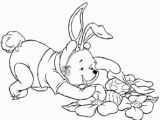 Coloring Pages Printable Winnie the Pooh Winnie the Pooh is Hunting Fro Easter Eggs Coloring Page
