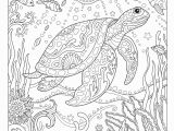 Coloring Pages Under the Sea Amazon Creative Haven Fanciful Sea Life Coloring Book