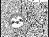 "Combo Panda Coloring Page Super Huge 48"" X 63"" Coloring Poster"