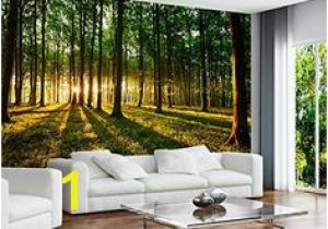 Commercial Wall Murals 46 Best Wall Mural Images