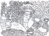 Coral Reef Coloring Page Best Coral Reef Coloring Page Coloring Pages