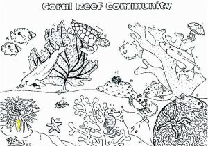 Coral Reef Coloring Page Coral Reef Coloring Pages Coral Reef Coloring Page Coral Reef