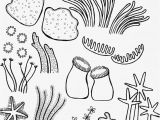 Coral Reef Coloring Page Drawing Underwater Coral Reef Coral Reef Pinterest