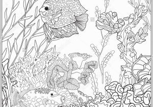 Coral Reef Coloring Pages Adult Coloring Book Coloring Page with Underwater World Coral Reef