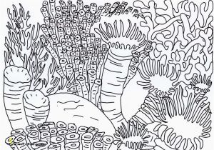 Coral Reef Coloring Pages Coral Reef Coloring Page Coral Reef Coloring Page Cool Printable