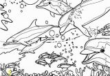 Coral Reef Coloring Pages Dolphin Coloring Pages Coral Reef Fish Dolphin Coloring Pagesfull