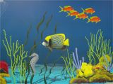 Coral Reef Wall Mural Underwater Mural Ceramics