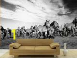 Cowboy Wallpaper Murals 23 Best Horse Wall Murals Images