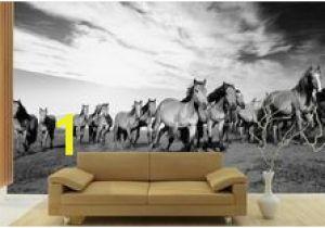 Cowboy Wallpaper Murals 23 Best Horse Wall Murals Images