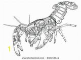 Crayfish Coloring Page 15 Unique Crayfish Coloring Page