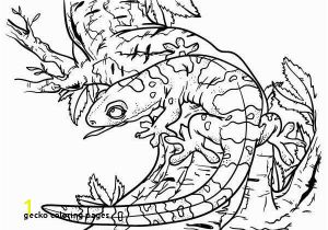 Crested Gecko Coloring Page 30 Gecko Coloring Pages Mycoloring Mycoloring