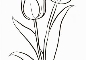 Crocus Coloring Page Two Tulips Coloring Page From Tulip Category Select From