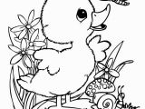 Cute Baby Animal Coloring Pages 20 Coloring Pages Animals Cute