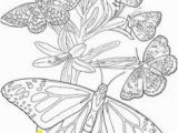 Cute butterfly Coloring Pages 30 Best Super Coloring Pages Images