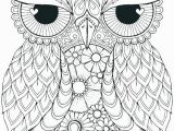 Cute Coloring Pages Of Owls Cute Owl Coloring Page Owl Coloring Pages Owl Color Pages Owl Color