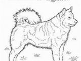 Cute Husky Puppy Coloring Pages Dog Color Pages Printable Husky Coloring Page