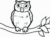 Cute Owl Coloring Pages Coloring Pages Owls Cartoon Owl Coloring Pages Cute Owl Coloring