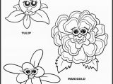 Daisy Girl Scout Flower Friends Coloring Pages the top 25 Ideas About Girl Scout Flower Friends Coloring