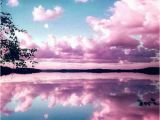 Dark Clouds Wall Mural Download Reflecting Pink Sky Wallpaper Von Goodfellagrl 0d