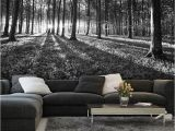 Dark forest Wall Mural Bws Black & White forest