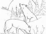 Detailed Wolf Coloring Pages for Adults Wolf Coloring Pages 02