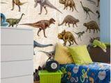 Dinosaur Wall Mural Uk 283 Best Murals for Kids Images
