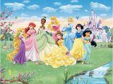 Disney Princess Wallpaper Murals Pin by Mcpherson Giftware On Disney Murals Pinterest