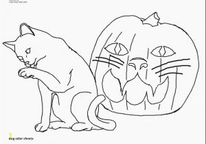 Dog and Cat Coloring Pages Printable Dog Color Sheets Dog and Cat Coloring Pages Luxury Best Od Dog